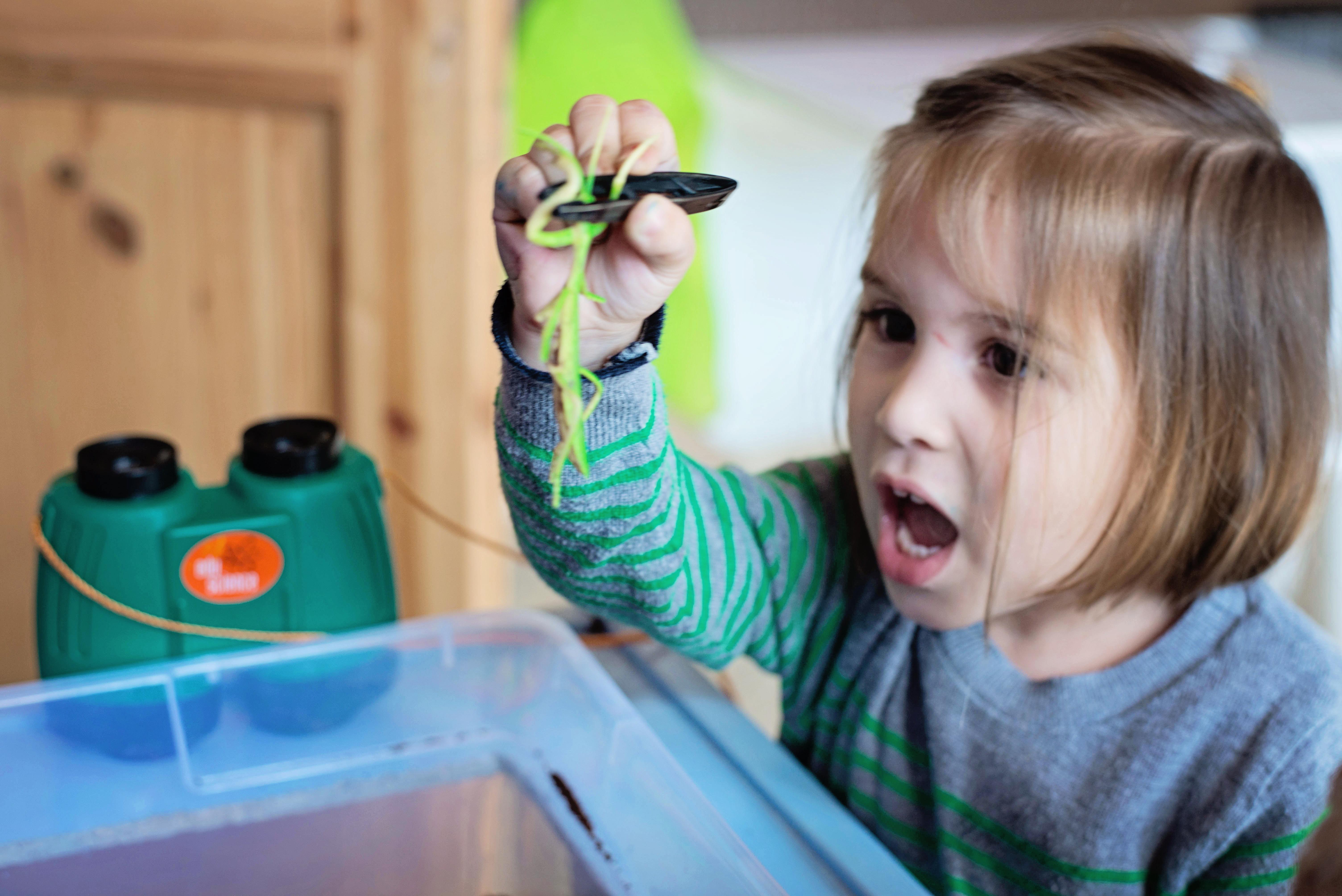 Babes in Deutschland, bug catching sensory bin