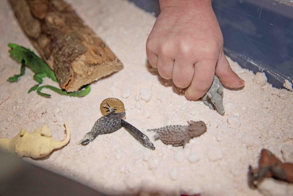 Moon Sand Desert Sensory Bin from Life Lesson Plans