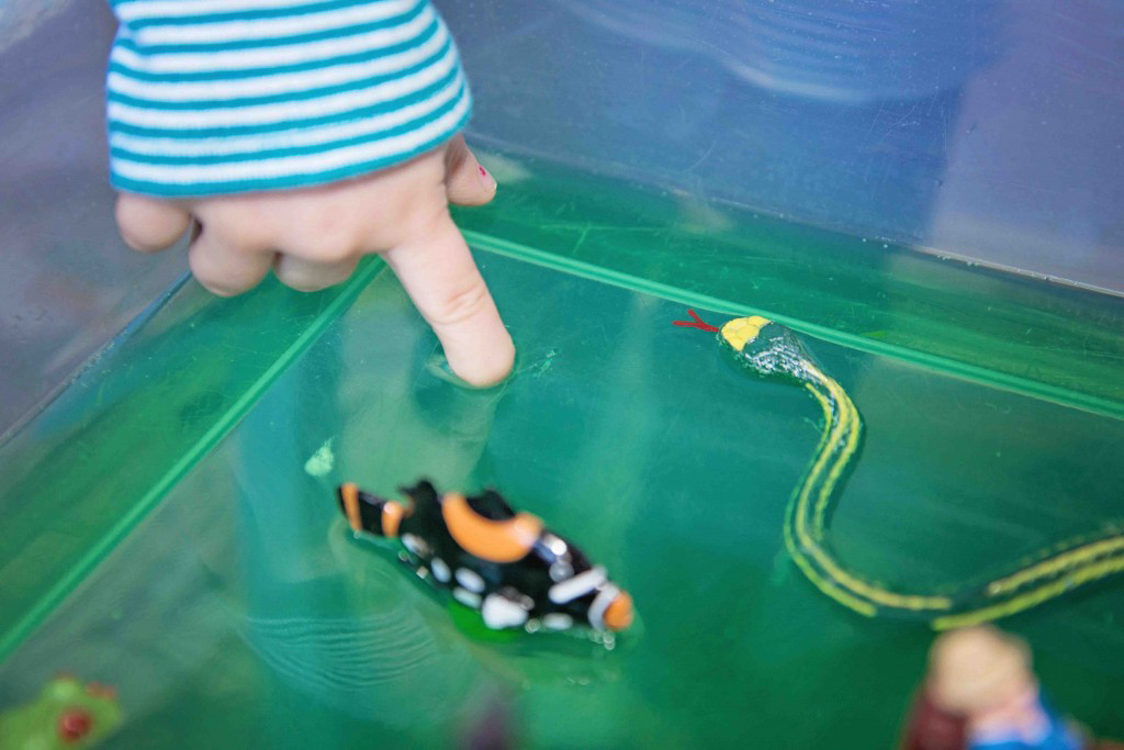 A Jello Pond Sensory Bin from Life Lesson Plans