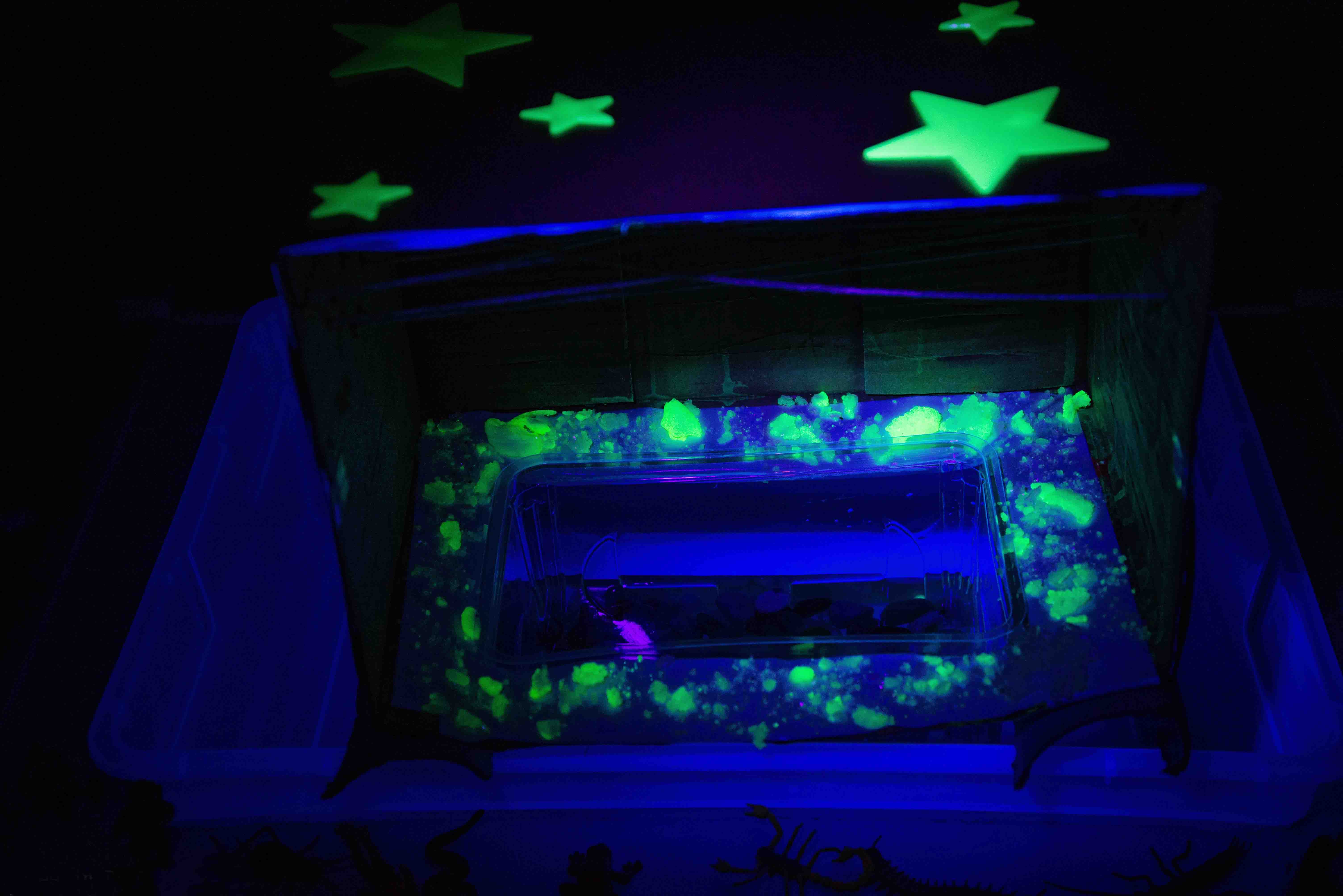Grow your own glowing crystals, and then make a crystal cave small world with them! A Halloween themed learning activity from Babes in Deutschland!