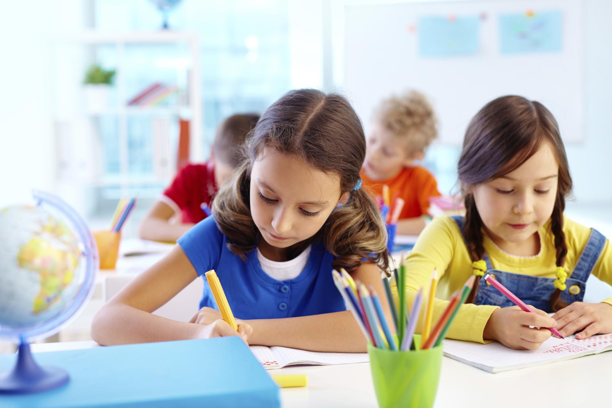 Top Public, Private, and Catholic Schools in the Klienburg Region