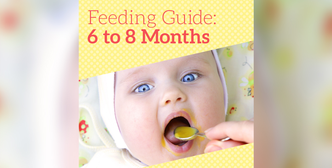 Feeding Guide: 6 to 8 Months
