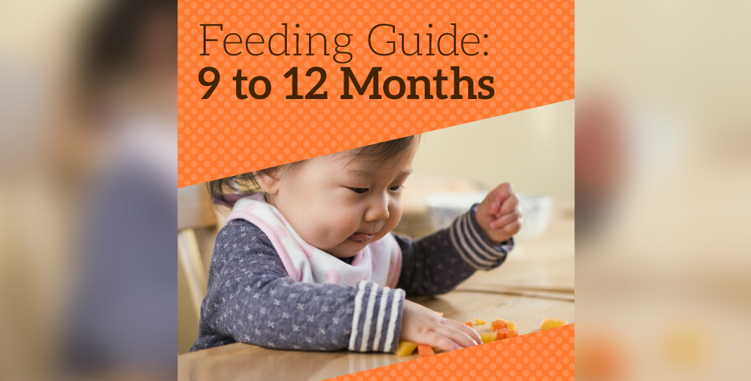 Feeding Guide: 9 to 12 Months