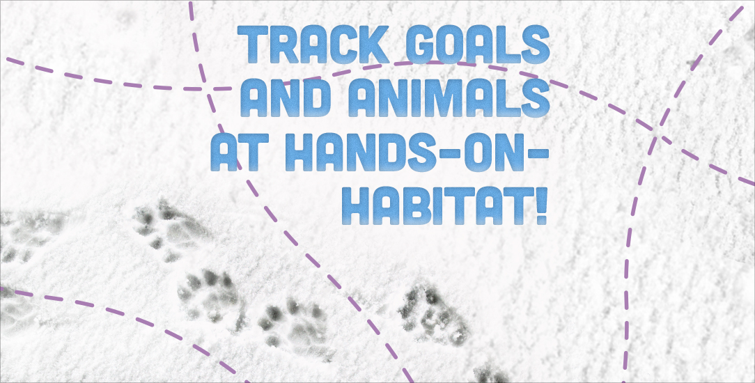 Track Goals and Animals at Hands-on-Habitat!