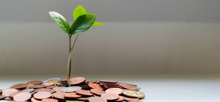 saving money. Photo of a pile of coins with a plant growing out of it